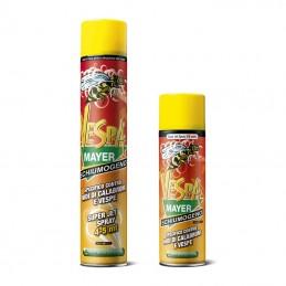 Insetticida per vespe spray...